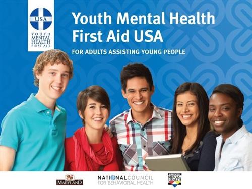 Image result for ymhfa