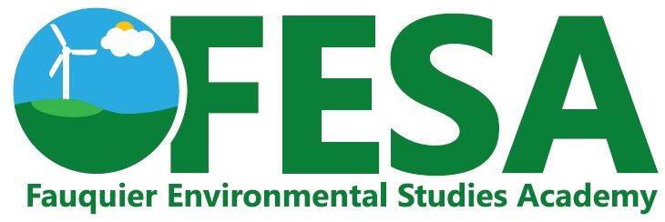 Picture of FESA Logo